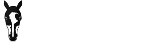 Reiten Belp